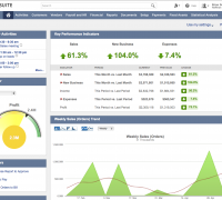 New NetSuite interface