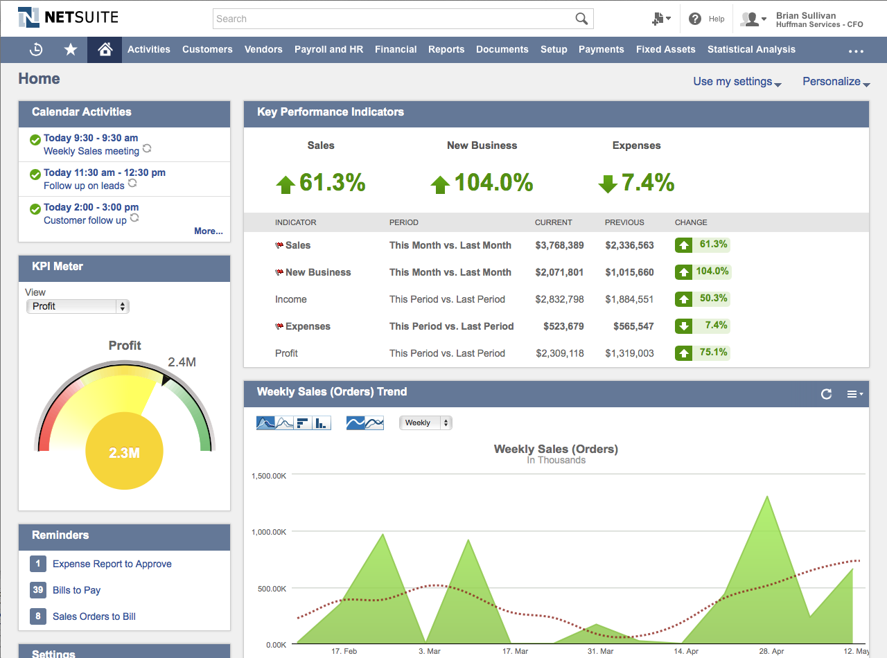 NetSuite_interface screenshot