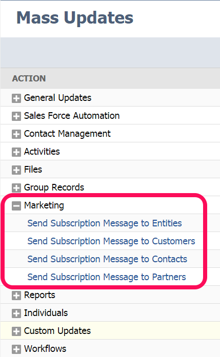 NetSuite_mass_update_marketing