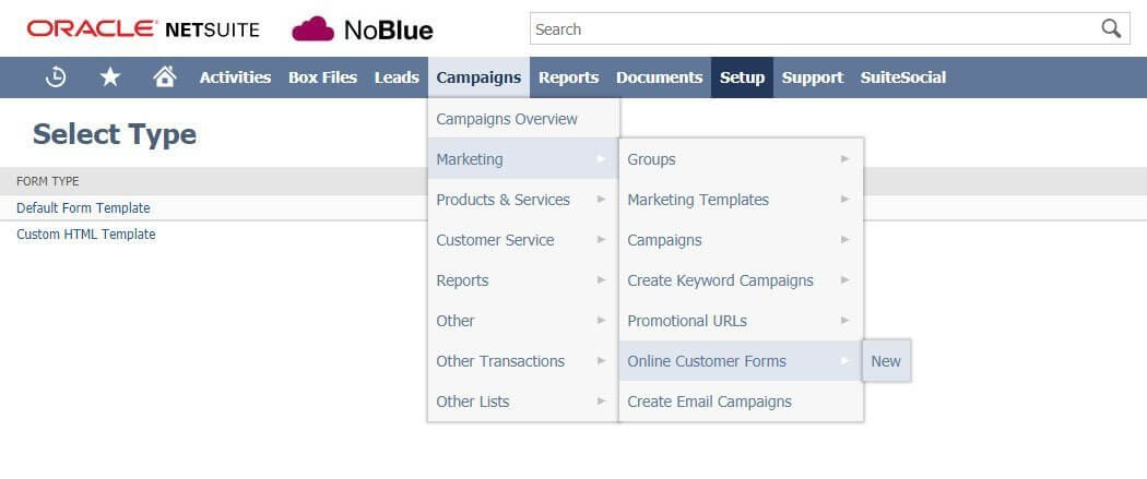 netsuite tips integrating contact forms with netsuite noblue